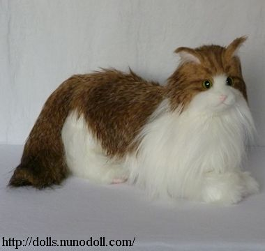 norwegian forest cat brown